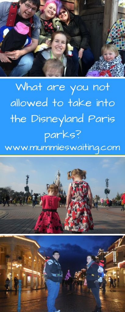 What are you not allowed to take into the Disneyland Paris parks_