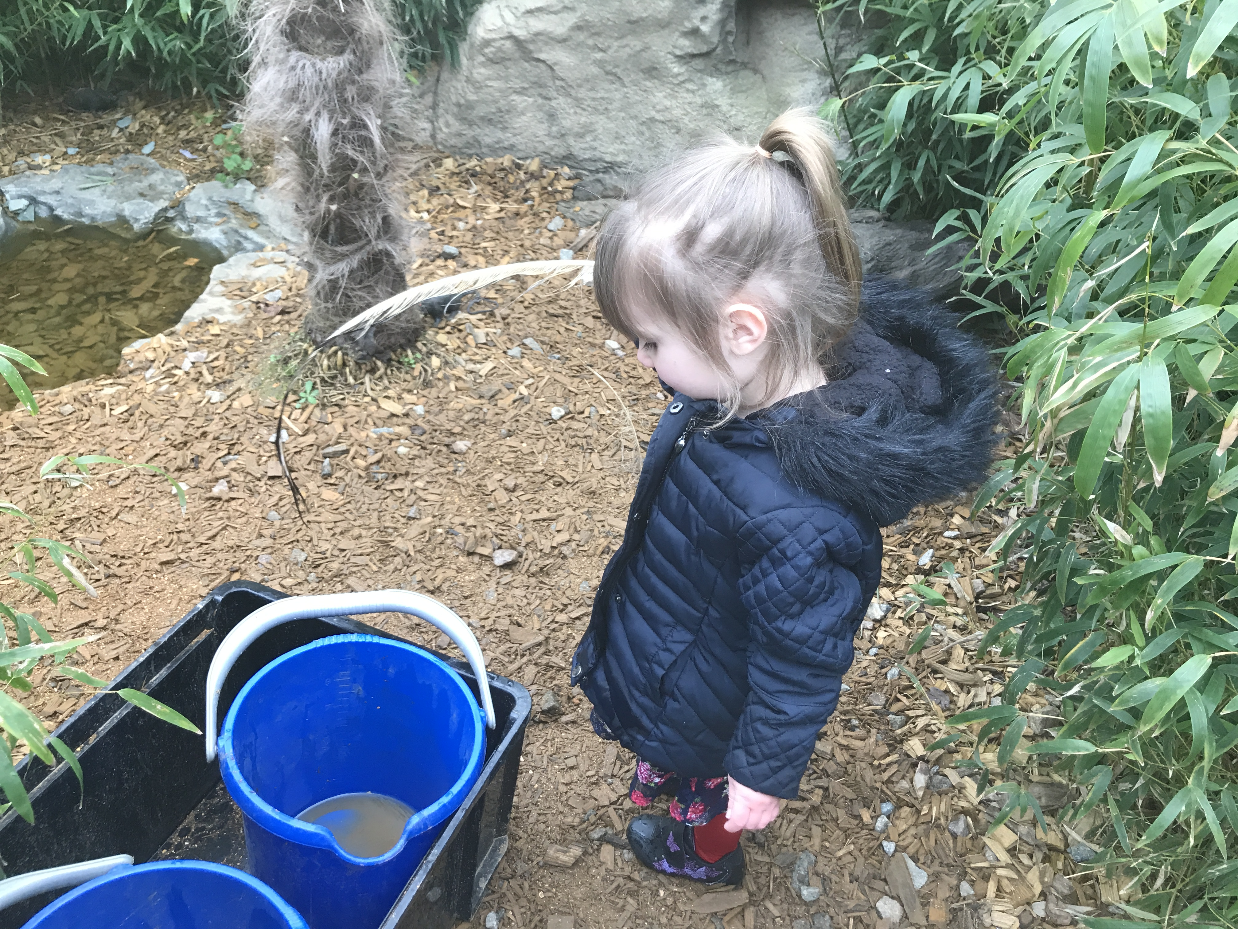 Colchester Zoo