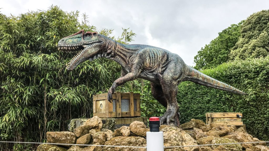There are so many dinosaurs to see all over the park at Roarr Dinosaur Adventure