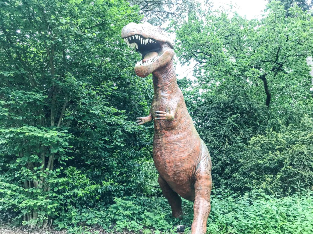 A large T-rex Dinosaur, surrounded by foliage at Roarr Dinosaur Adventure Park