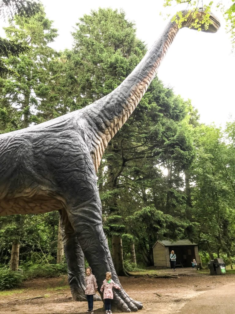 Brachiosaurus standing very tall at Roarr Dinosaur Adventure