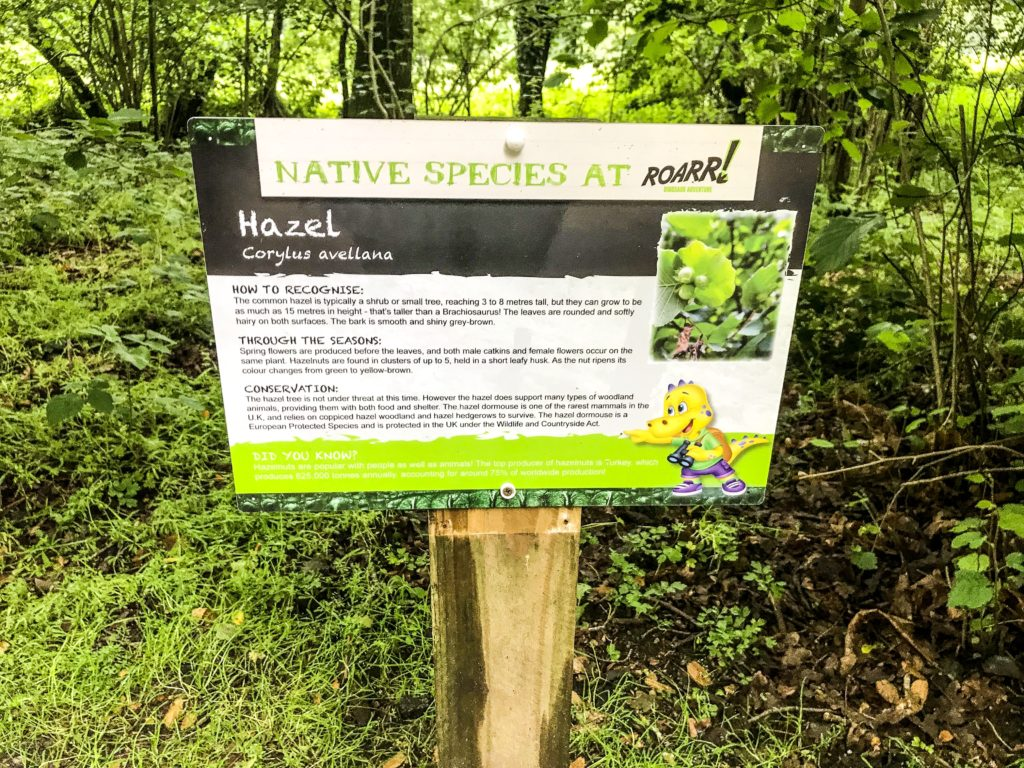 Information Boards for education at Roarr Dinosaur Adventure