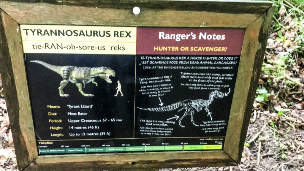 T-Rex dinosaur sign with information about the dinosaur and rangers notes at Roarr Dinosaur Adventure