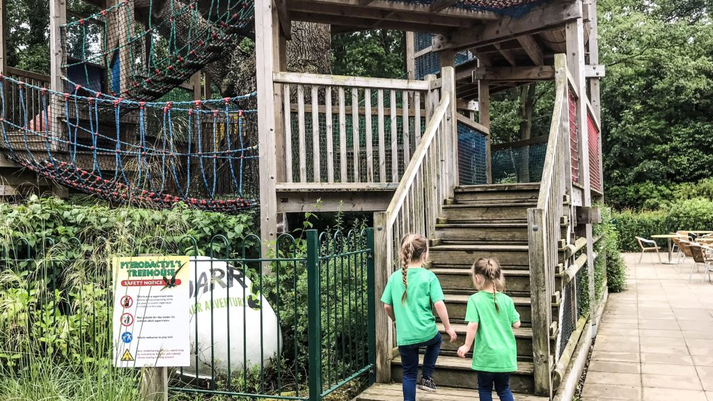 The outdoor Pterodactyl's treehouse was lots of fun at Roarr Dinosaur Adventure