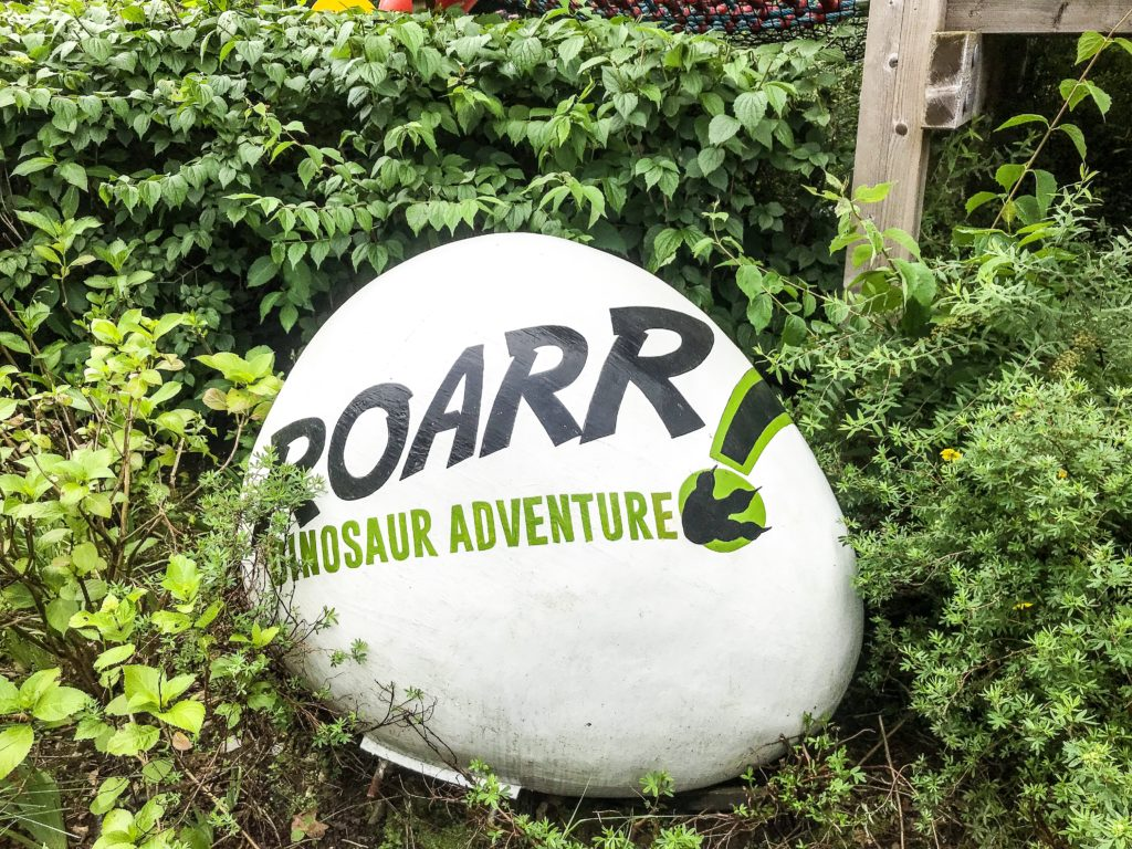 Large painted white smooth rock with the words Roarr Dinosaur Adventure! and a dinosaur paw print surrounded by foliage