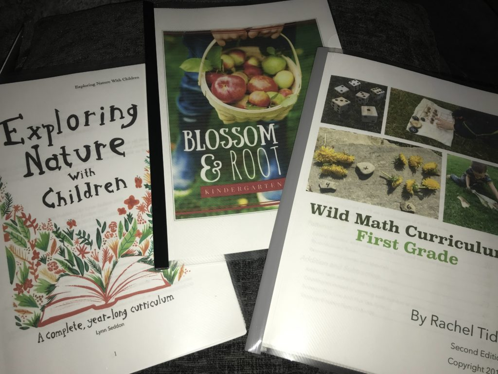 Home Education Curriculum